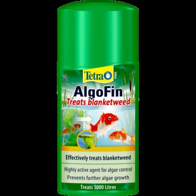 Clarity & Algae