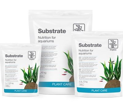 Soils & Substrates